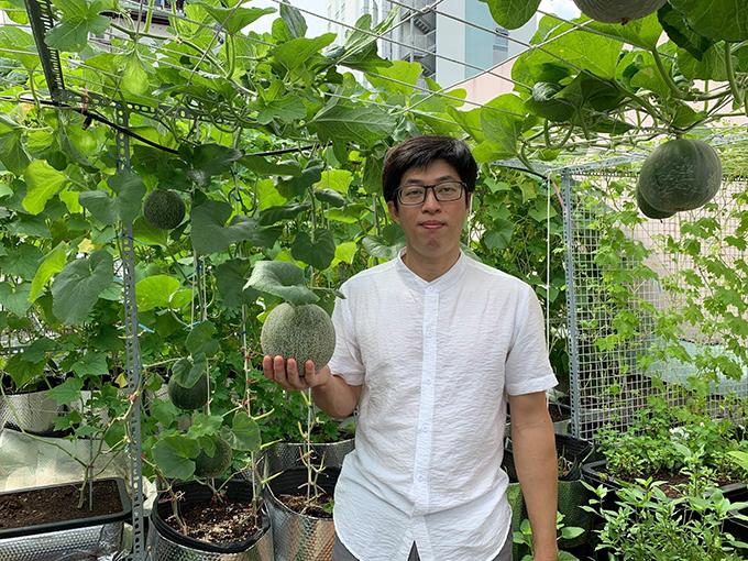 Đều đặn 5 tháng nay, ngày nào anh Phan Văn Nguyện (35 tuổi, TP HCM) cũng lên thăm vườn 30 m2 ngay trên sân thượng và mái tôn nhà mình.