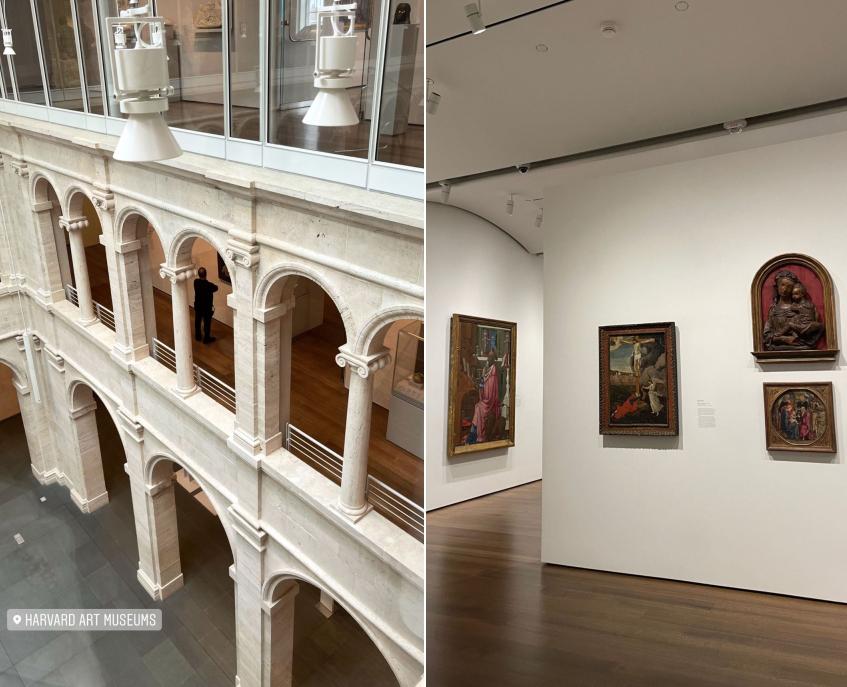 Cô dành cả buổi để lang thang trong bảo tàng nghệ thuật Harvard. Đây là một phần của đại học Harvard và bao gồm ba bảo tàng: Fogg, Busch-Reisinger và Arthur M. Sackler cùng 4 trung tâm nghiên cứu. Một số trong các sơ sở này có tuổi đời hơn 100 năm.