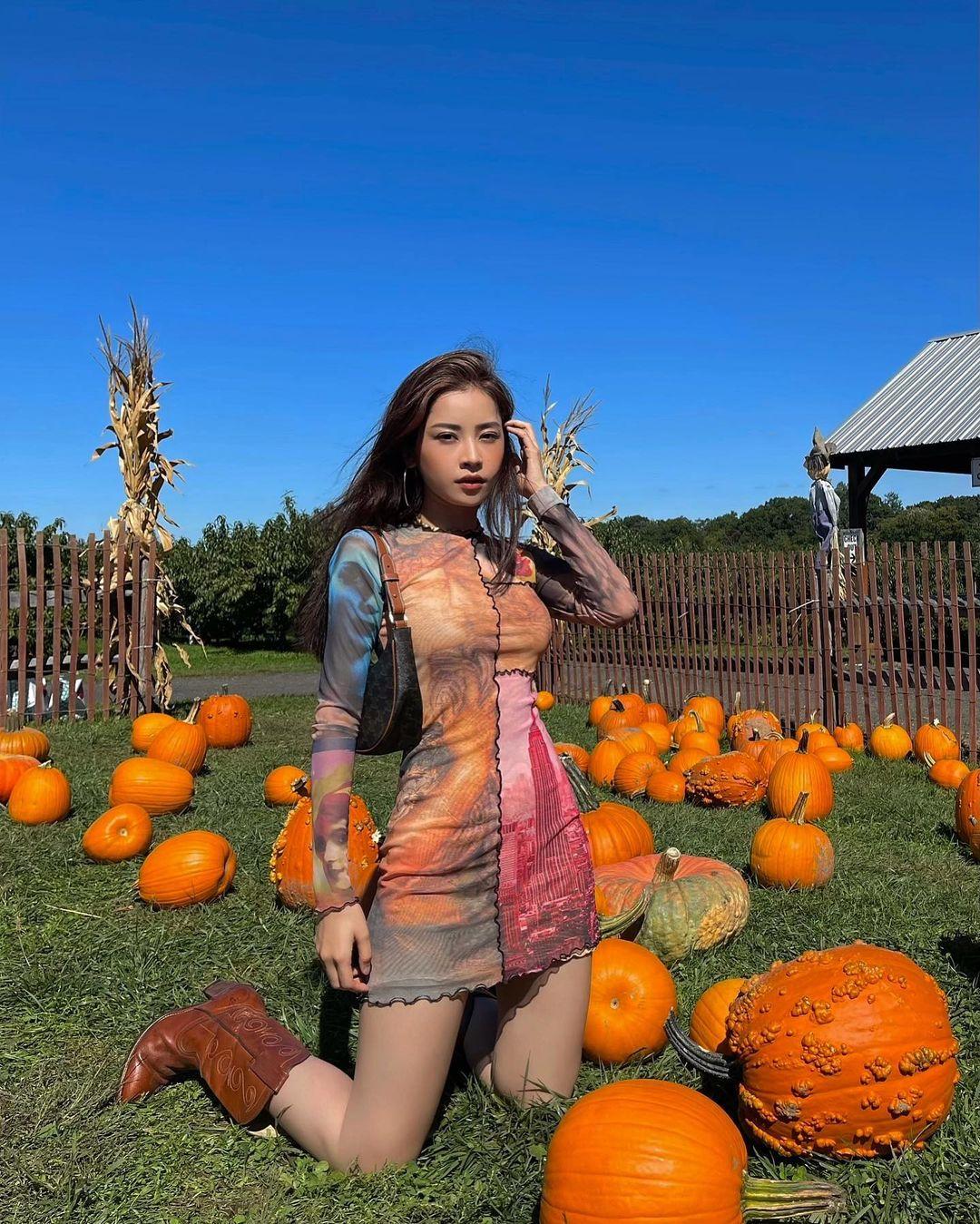 Đồng thời, Chi Pu cũng cho biết, cô nhận được rất nhiều lời tư vấn chỗ ăn chơi, ngắm cảnh đẹp của cộng đồng người Việt ở Mỹ. Người đẹp ghi lại hết những địa danh này và đang lên lịch trình. Mới đây, giọng ca Anh ơi ở lại khoe ảnh đón Halloween sớm một tháng tại một trang trại bí ngô bắt gặp dọc đường khi cùng gia đình lái xe ngang qua.