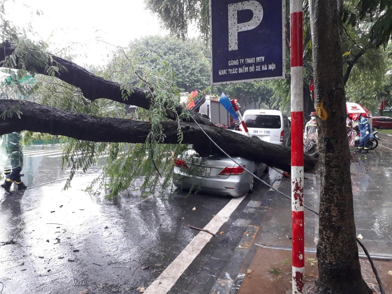 Cây me bật gốc đè bẹp ôtô trên phố Ngô Quyền. Ảnh Phú Hoàng.