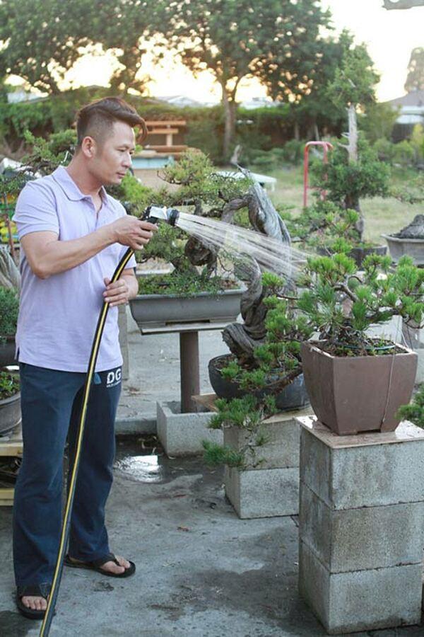 Bằng Kiều yêu thích cuộc sống nông dân nơi phố thị, cả ngày chăm sóc cây cối.