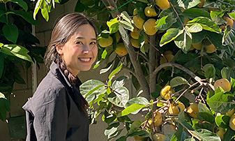 Dương Mỹ Linh thu hoạch trái cây
